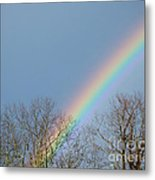 Rainbow Through The Tree Tops Metal Print