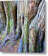 Rainbow Tree Metal Print