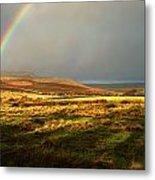 Rainbows End Metal Print