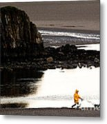 Raincoat Dog Walk Metal Print