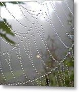 Raindrop Pearls In Fog Metal Print