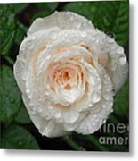 Raindrops And Roses Metal Print
