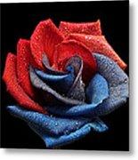 Raindrops On Rose Metal Print