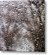Raindrops Metal Print by Richie Stewart