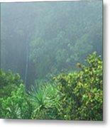 Rainforest And Lower Puohokamoa Falls Maui Hawaii Metal Print