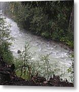 Rainforest River Metal Print