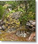 Rainforest Rock Slide Metal Print