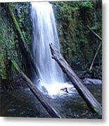 Rainforest Run Off Metal Print