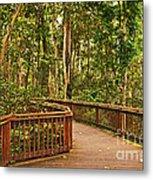 Rainforest Walkway Metal Print
