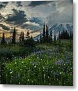 Rainier Abundance Of Flowers Metal Print