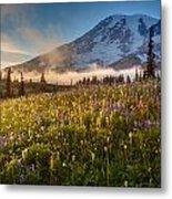 Rainier Golden Sunlit Meadows Metal Print