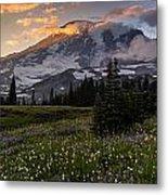 Rainier Meadows Splendor Metal Print