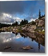 Rainier Spray Park Reflection Metal Print