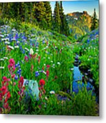 Rainier Wildflower Creek Metal Print