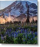 Rainier Wildflower Meadows Pano Metal Print