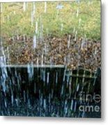 Raining Outside Metal Print