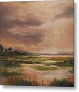 Rainmaker Metal Print by Cecelia Campbell
