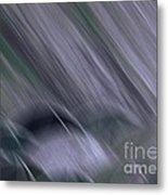 Rainy By Jrr Metal Print
