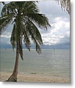 Rainy Day In Paradise Metal Print