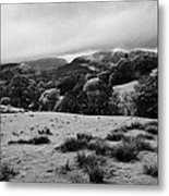 Rainy Day In The Lake District Near Loughrigg Cumbria England Uk Metal Print