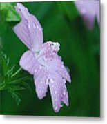 Rainy Day Mallow Metal Print