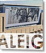 Raleigh At The Shimmer Tree Metal Print