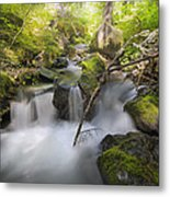 Ramona Creek Metal Print