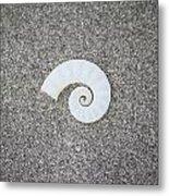 Rams' Horm Shell Metal Print