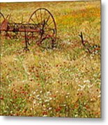Ranch And Wildflowers And Old Implement 2am-110546 Metal Print