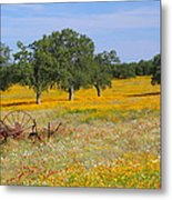 Ranch And Wildflowers And Old Implement 2am-110556 Metal Print