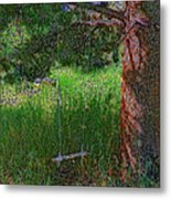 Ranch Kids' Swing Metal Print
