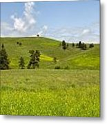 Rangelands Of Custer State Park Metal Print