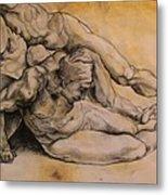 Raphael's Drawing Metal Print