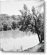 Rappahannock Riverbank I Metal Print