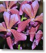 Rare Orchids Metal Print