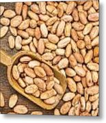 Raw Cacao Beans Metal Print