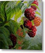 Razzleberries Metal Print