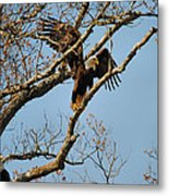 Reach For New Heights Metal Print