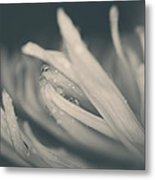 Reach Out And I'll Be There Metal Print