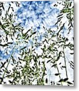 Reach To The Sky Metal Print