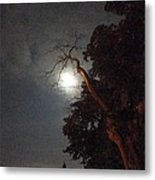 Reaching For The Moon Metal Print by Guy Ricketts