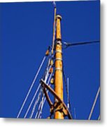 Reaching Out To The Sky Metal Print