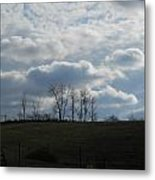 Reaching To The Clouds Metal Print