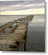 Reaching To The Horizon Metal Print