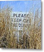 Reading Thru The Reeds Metal Print