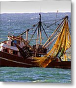 Ready For Shrimp Metal Print by Robert Bascelli