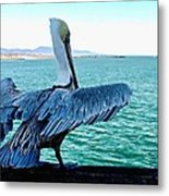 Ready For Takeoff Metal Print by Brian D Meredith
