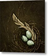 Rebirth Metal Print by Amy Weiss