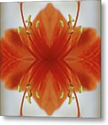 Red Amaryllis Flower Metal Print