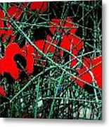 Red An Black Poppies 1 Metal Print